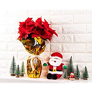 Juvale Red Poinsettia Christmas Decorations - 4-Pack Decorative Flowers with Stem, Artificial Plant and Christmas Tree Ornament for Home Office Decoration 2