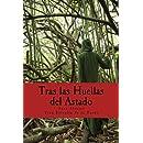 Tras las Huellas del Astado: Una Guía Práctica sobre los rostros del Dios (Spanish Edition)