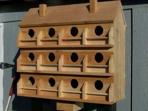 Purple Martin Birdhouse Seperate Compartments product image