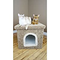 Big Cat Litter Box with Lid in Green Cat Litter Box Enclosure Bed
