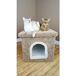 Big Cat Litter Box with Lid in Green Cat Litter Box Enclosure Bed
