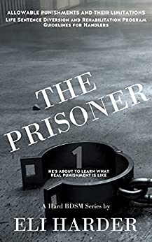 Prisoner About Learn What Punishment ebook product image