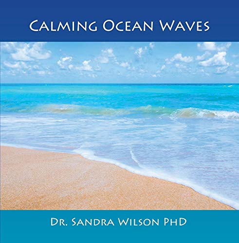 Price comparison product image Calming Ocean Waves - Simple Pure Peaceful Nature Ocean Waves - CD High Quality