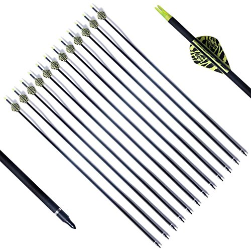 adult carbon arrows - 7