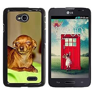 PC/Aluminum Funda Carcasa protectora para LG Optimus L70 / LS620 / D325 / MS323 Skeptical Chihuahua Canine Pet Canine / JUSTGO PHONE PROTECTOR