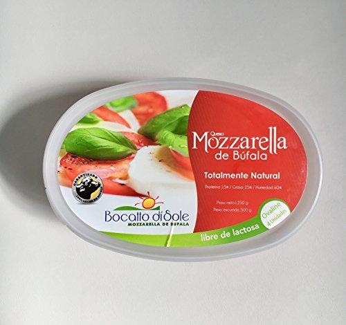 Italian Buffalo Mozzarella (Mozzarella Buffalo Cheese Ovaline Lactose Free (18 oz))