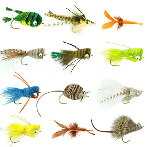 Fly Fishing Place Bass Collection product image