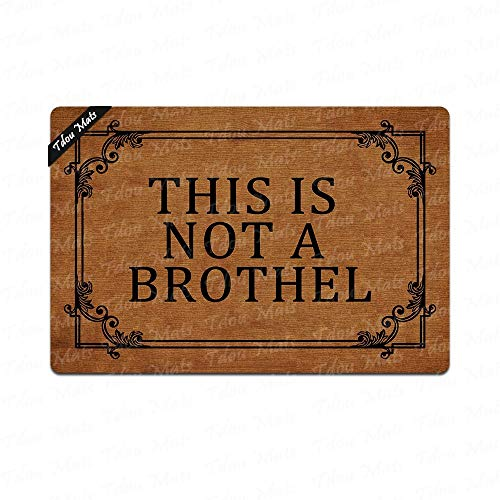 Cindy&Anne This is A House Not A Brothel Outdoor Indoor Funny Doormat Floor Door Mat Machine Washable Non Slip Mats Bathroom Kitchen Decor Area Rug for Entrance 23.6x15.7 inch