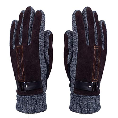 Men's Winter Leather Gloves - WITERY Thick Warm Fleece Windproof Gloves...
