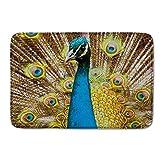 CIliik Pretty Peacock Bird Rug Bath Doormats Indoor Outdoor Floor Door Mats Gate Pad Blue Gold Yellow