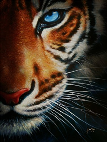 Le Beau Giclee by AFD Home 11158241 Tiger Gallery Wrap, 36-Inch by 48-Inch