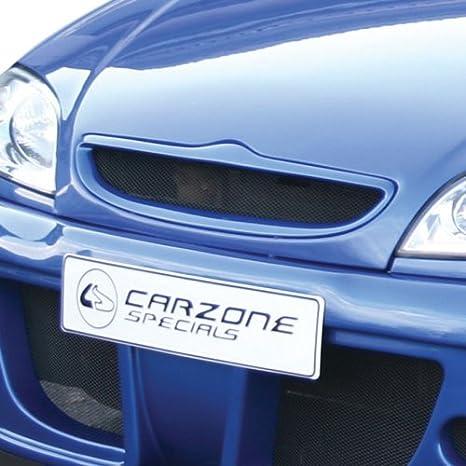 Carzone K109700 - Rejilla de radiador para Citroën Saxo PH2: Amazon.es: Coche y moto