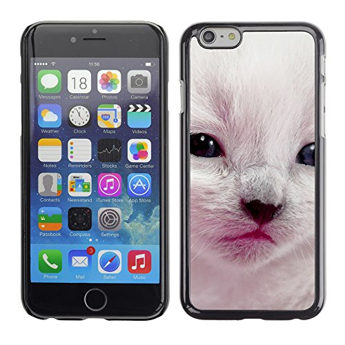 Premio Sottile Slim Cassa Custodia Case Cover Shell // V00002916 beau chat // Apple iPhone 6 6S 6G 4.7""