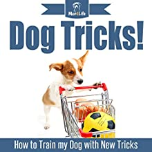 Dog Tricks!: How to Train My Dog with New Tricks: Mav4Life Audiobook by Mav4Life Narrated by Millian Quinteros