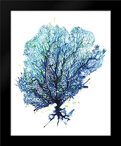 (Sea Fan - Aqua 20x24 Framed Art Print by Nagel, Sam)