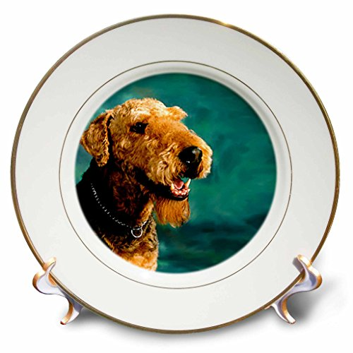 3dRose Dogs Airedale - Airedale Terrier - 8 inch Porcelain Plate (cp_854_1)
