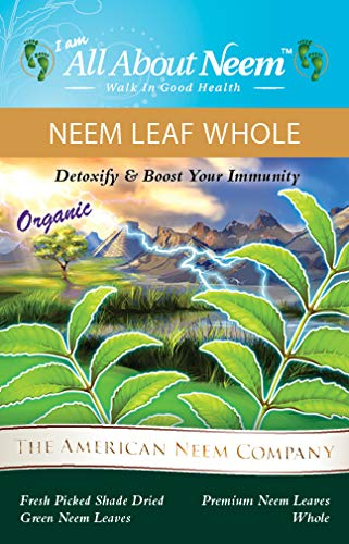 Neem Leaves Whole, Wild Harvested Shade Dried  Premium, Organic, Green (5  Oz) for Tea, Boost