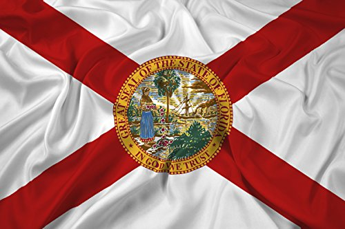 5x8ft Florida State Flag / State Flag of Florida - Highest Quality Outdoor Nylon - Made to Last by Federal Flags