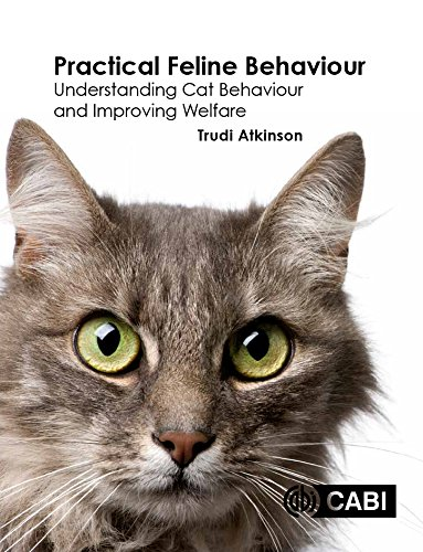 Practical Feline Behaviour: Understanding Cat Behaviour and Improving Welfare by CABI