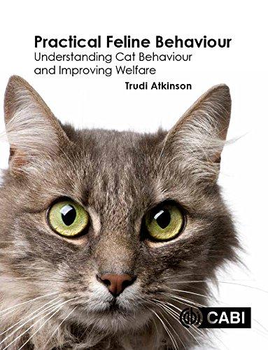 FREE Practical Feline Behaviour: Understanding Cat Behaviour and Improving Welfare<br />ZIP