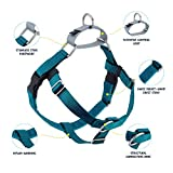2 Hounds Design Freedom No-Pull Dog Harness and