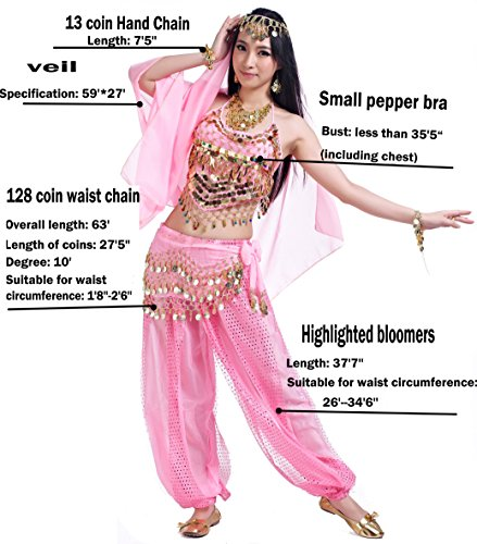 1a3928c8b Genie Costumes for Halloween Women Lady's Belly Dance Costumes Set Outfit  Accessories Pink