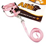 Alfie Pet by Petoga Couture - Kobi Harness and Leash Set for Small Animals like Guinea Pigs and Rabbits - Color: Pink Black