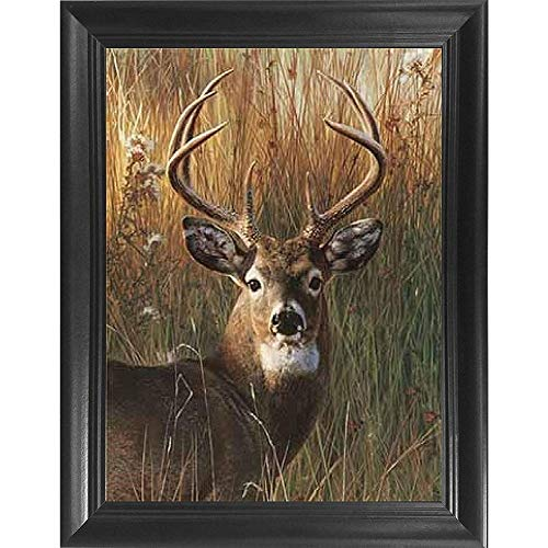 Deer Antler Portrait 3D Poster Wall Art Decor Framed Print | 14.5x18.5 | Lenticular Posters & Pictures | Memorabilia Gifts for Guys & Girls Bedroom | Forest Wildlife & Hunting Animal Picture for Home