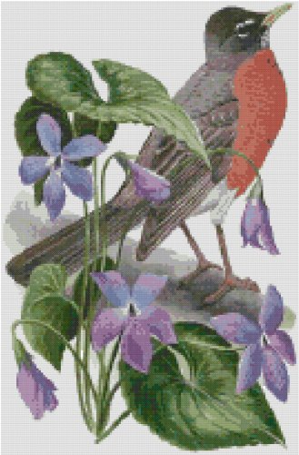 Wisconsin State Bird (American Robin) and Flower (Wood Violet) Counted Cross Stitch Pattern