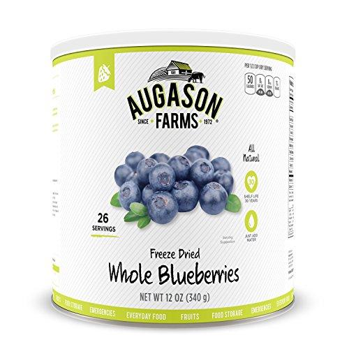 blueberry freeze dried - 7