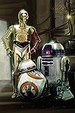 Pyramid Intl - Poster Star Wars Episode 7 - Droids 61X92Cm - 5050574336536