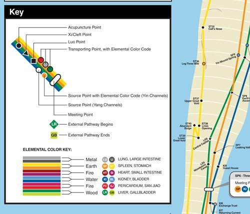 Audiosorce Subway Map.Nyc Subway Style Acupuncture Wall Map Cody Dodo 0798304345889