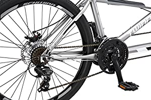 Schwinn Twinn Tandem Bicicleta Grande, Ruedas de 26 Pulgadas ...