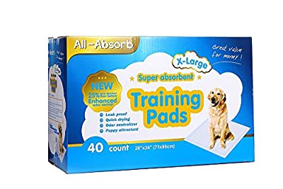 All-absorb Extra Large Training Pads 28-inch By 34-inch