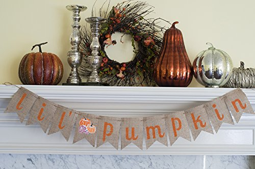 Fall Birthday Decor, Little Pumpkin Burlap Banner B077 (Fireplace Fall Mantels)