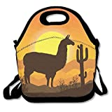 LLama Lama Cactus Sunset Lunch Bag Tote Handbag Lunchbox Food Container Tote Cooler Warm Pouch For School Work Office