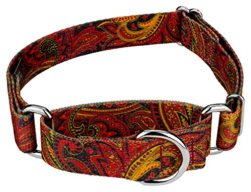 Country Brook Design | 1 1/2 Inch Fire Paisley Martingale Dog Collar-Large