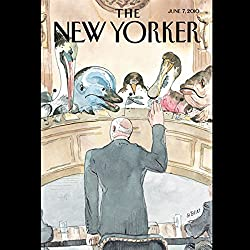 The New Yorker, June 7th, 2010 (John Lanchester, Larry Doyle, Jeffrey Eugenides)