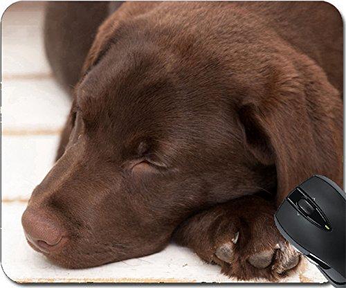 MSD Natural Rubber Mousepad Mouse Pads/Mat design: 13803763 chocolate sleeping labrador puppy closeup