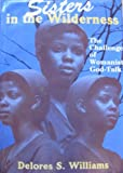 Sisters in the Wilderness : The Challenge of Womanist God-Talk, Williams, Delores S., 088344772X