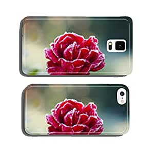 Rose covered with hoarfrost cell phone cover case iPhone5