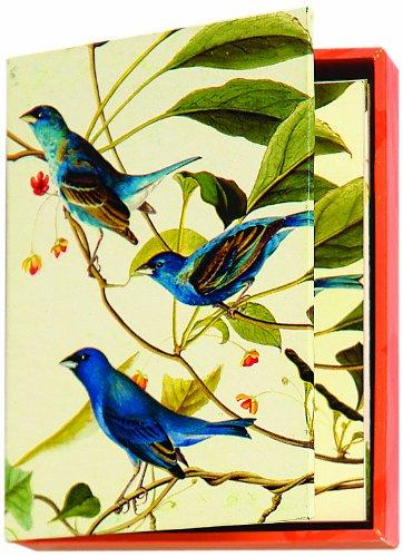 Metropolitan Museum of Art Boxed Note Cards, Audubon Birds (MN211)