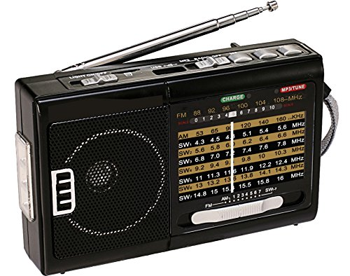 NEW QFX R-39 AM/FM/SW 10 Band Radio with Flashlight and USB/