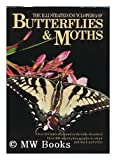 Illustrated Encyclopedia of Butterflies and Moths, V. J. Stanêk, Brian Turner, 0706405471