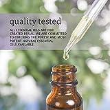 Now Foods - Tea Tree Oil 4 oz