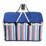 PINCHUANGHUI Large capacity Cooler Bag Picnic Basket Lightweight Foldable Cooler Bag With Aluminum Handle for Outdoor -Blue