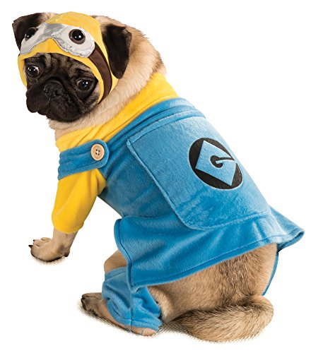 Halloween Costumes Item - Cat & Dog Costume Minion Medium (Minion Cat Costume)