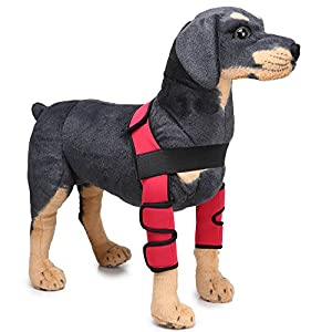 MDCT Dog Elbow Protector Extra Supportive Dog Canine Rear Leg Hock Joint Wrap Sleeve Red Click on image for further info.
