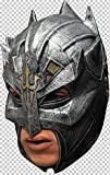 Dragon Warrior Helmet Chinless Head Mask With Chinstrap