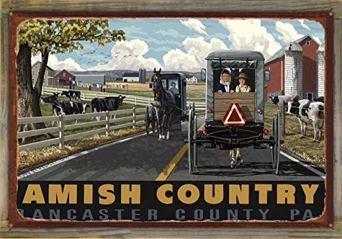 (Northwest Art Mall Amish Country Lancaster County Pennsylvania Country Horse Buggy Rustic Metal Print on Reclaimed Barn Wood by Paul A. Lanquist (24